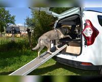 hundeauto---reiseauto---campingauto---dacia-lodgy-dci-110-woltersdorf