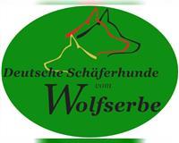 deutscher-schaeferhund-pfinztal